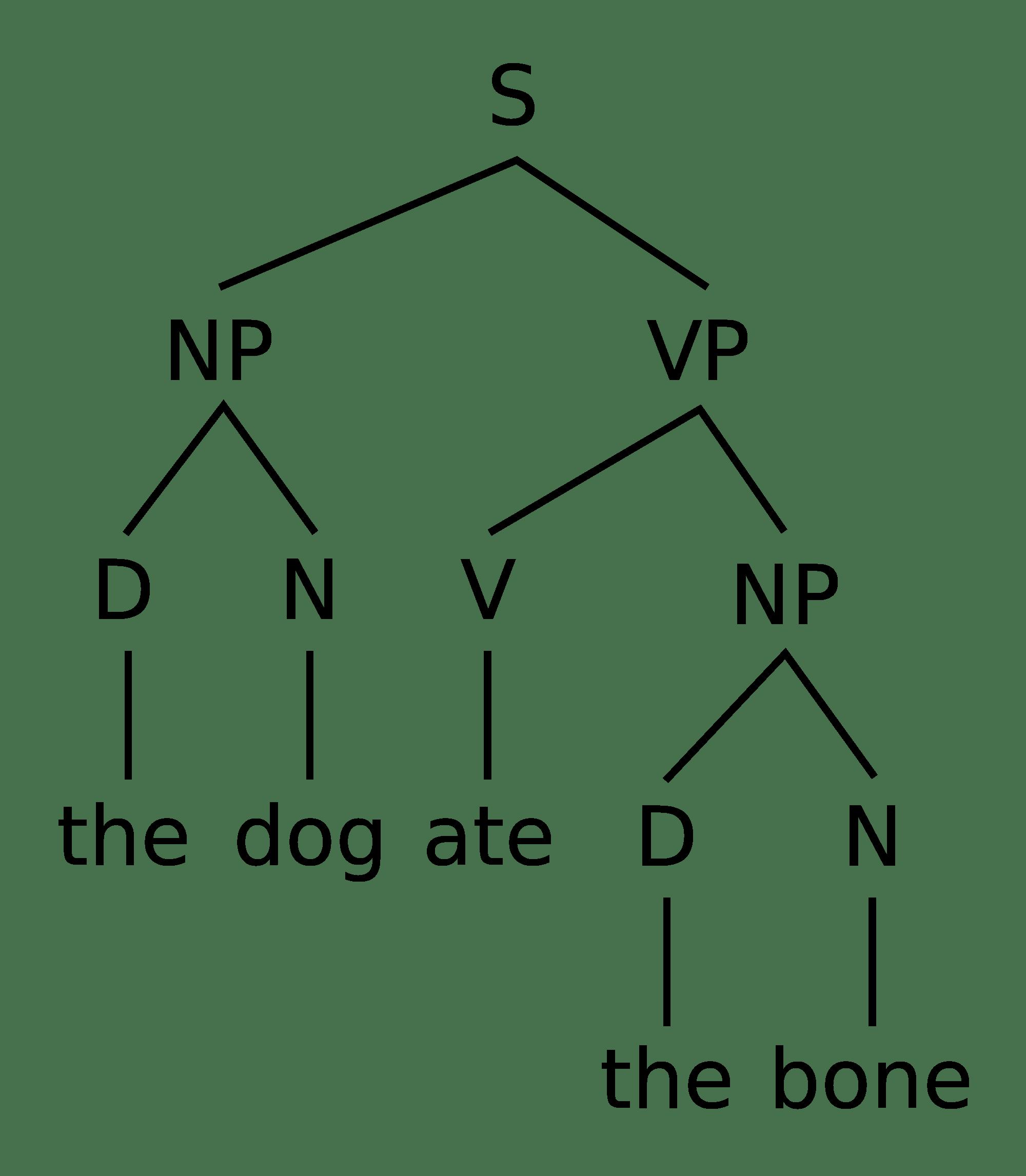 Ekaterina Lyutikova On Syntax Models Or Syntax For