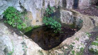 abbeveratoio (1)