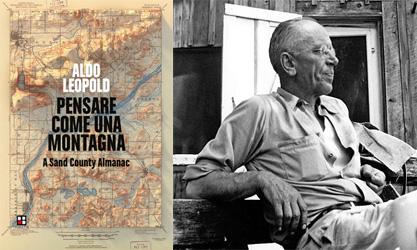 """""""Pensare come una montagna"""" di Aldo Leopold. Assolutamente da leggere !"""