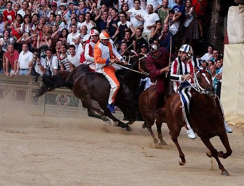 I cavalli in corsa al palio di Siena