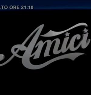 Logo di Amici 2013