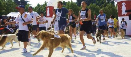 Corsa cani e padroni