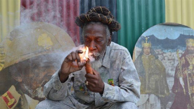 Jamaica marie