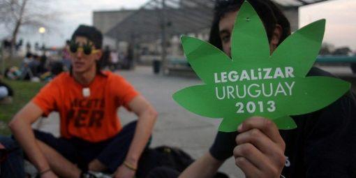 Uruguay-cannabis.jpg