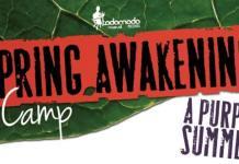 Spring Awakening Camp