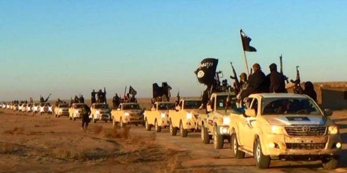 Gli Usa vogliono distruggere l'ISIS ma si oppongono a tutte le forze che lo stanno combattendo sul campo. Noam Chomsky
