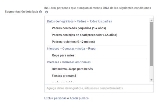 Intereses y Comportamientos Facebook Ads