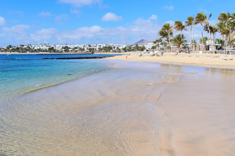 Beautiful beach of Las Cucharas in Costa Teguise, Lanzarote, Canary Islands. View of the blue sea, yellow sand, palm trees