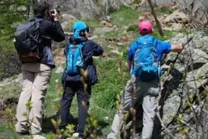 escursionisti con stambecchi