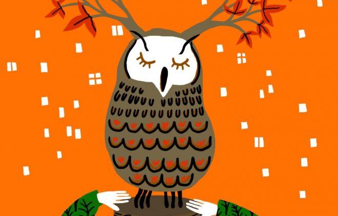 """""""Bioeconomía: un futuro sustentable en madera"""" es el tema central de la segunda versión del concurso de cuentos organizado por Madera21 y BiblioGam"""