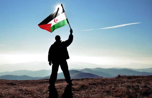 Sahara Occidental, colonialismo y olvido de un país que lucha por existir.  – La pajarera Magazine
