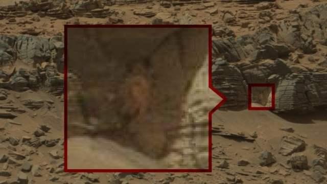 El cangrejo en Marte