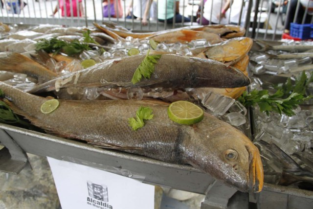 Feria del Pescado 2013 Alcaldía de Maracaibo (25)