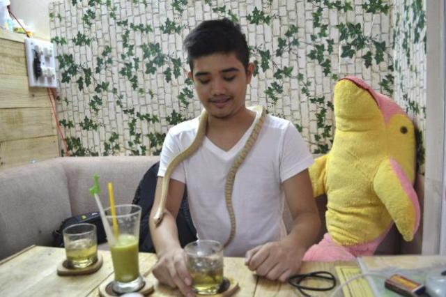 cafeteria_vietnam