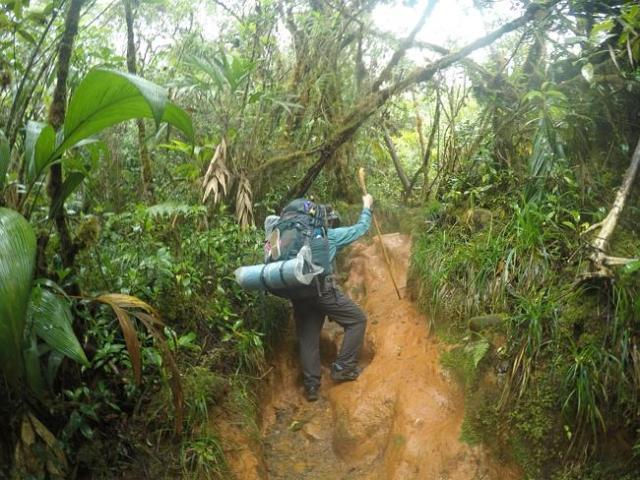 Fue una escalada difícil / Foto W. Hatton