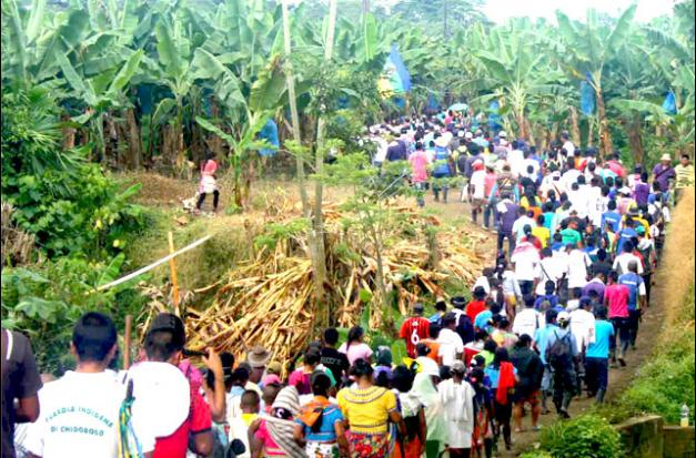 Foto: Organización Indígena de Antioquia