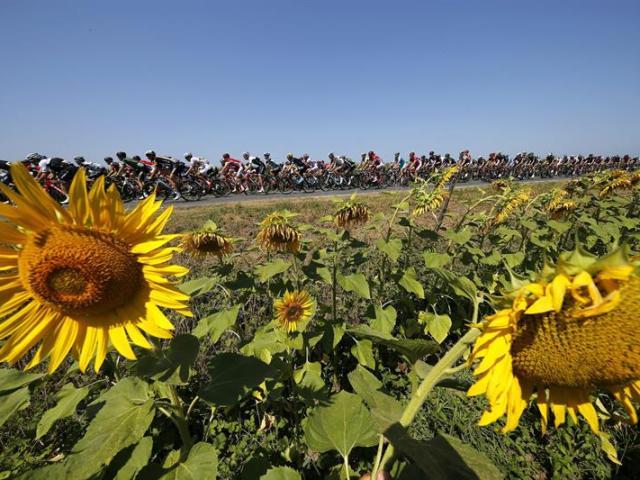 El pelotón participa en la 11ª etapa del Tour de Francia, que discurre entre las localidades galas de Pau y Cauterets (Francia), hoy, 15 de julio de 2015. EFE/Kim Ludbrook