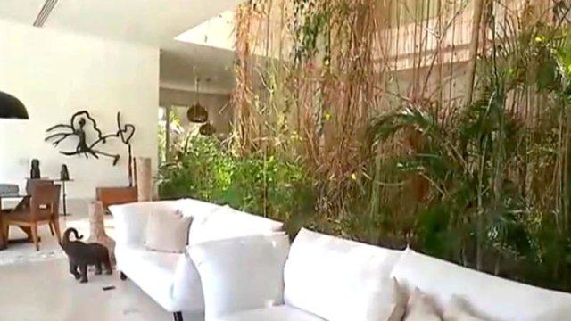 Casa de Xuxa 1 - Playa, estudio de fotografía y una selva en medio de la sala (FOTOS)