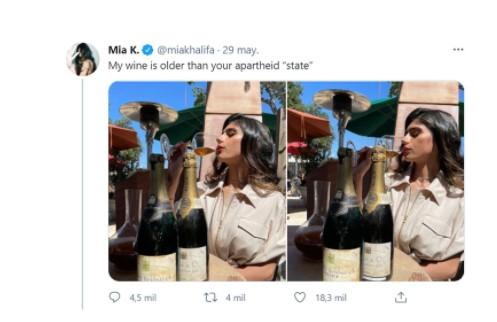 Screenshot 8 - El repudiable mensaje nazi de una ex actriz porno para criticar a Israel