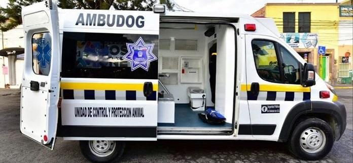 """Inauguran en San Luis Potosí la """"Ambudog"""", Ambulancia para perros sin hogar"""
