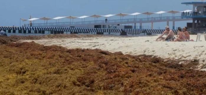 Se llena de sargazo playa del Carmen