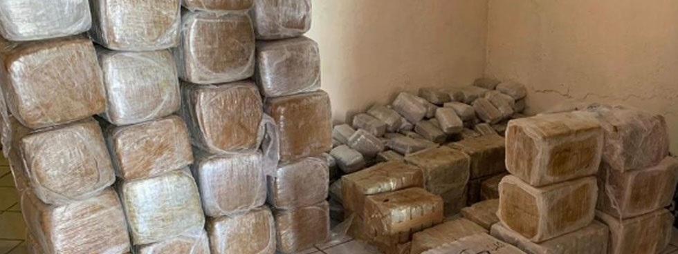 Aseguran más de media tonelada de mariguana