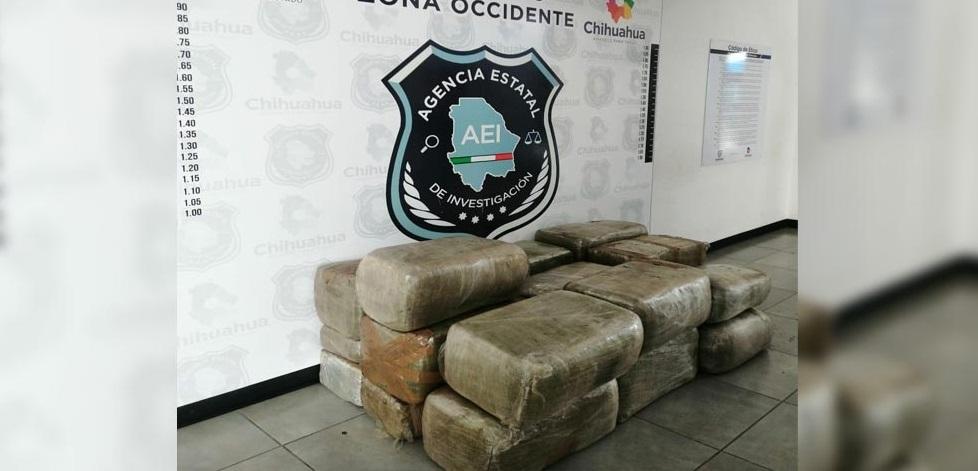 Aseguran 255 kilogramos de mariguana en Ocampo