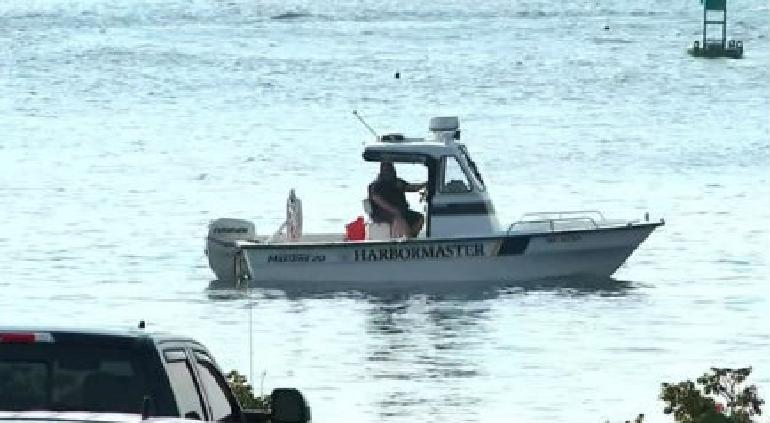 Murió madre frente a su hija tras ataque tiburón blanco en Maine