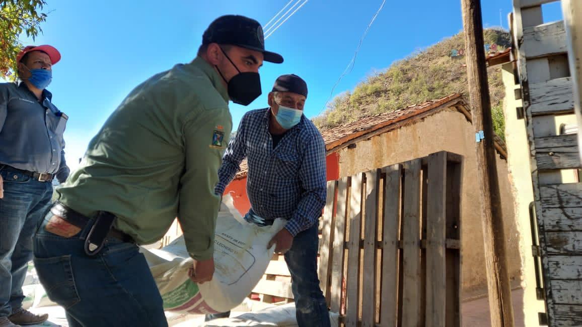 Entregan maíz subsidiado en localidades de Guadalupe y Calvo