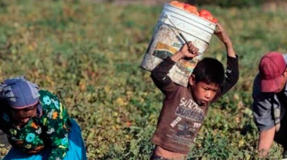 Trabaja el 7% de niños de 12 a 14 años en Delicias
