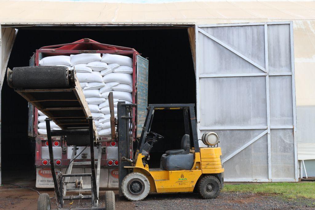Cuauhtémoc > Emite Desarrollo Rural convocatoria para adquirir semilla de avena certificada