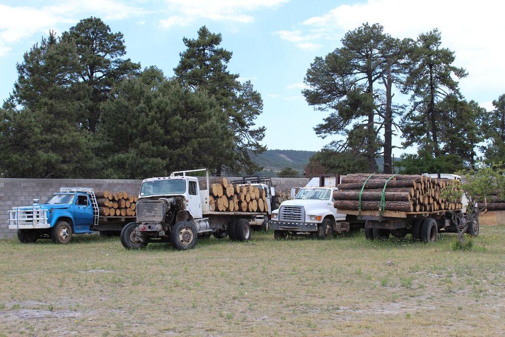 Fiscalía pone a la venta madera confiscada al crimen organizado