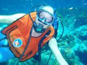 Bob diving 2010