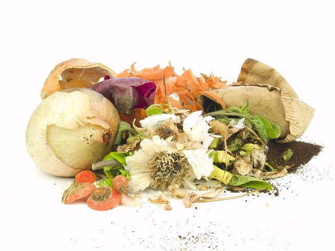 Eco Kitchen | How to Reduce Food Waste in the Kitchen? 9