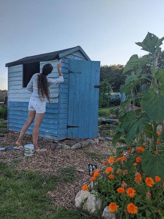 Green Living | My First Year on The Allotment 152