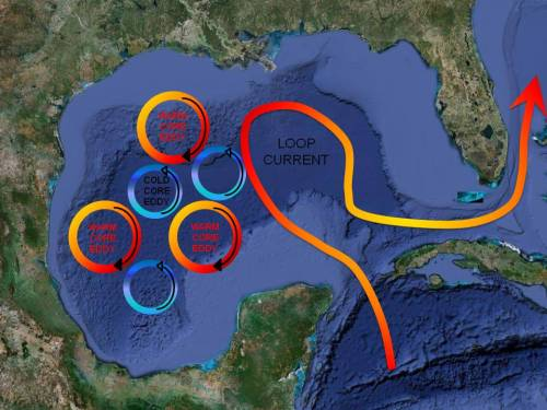 Ther Loop Current and relative eddies in the Gulf Of Mexico