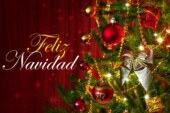 Le Grand Journal du Mexique vous souhaite un Joyeux Noël !