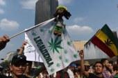 Le Mexique veut légaliser l'usage du cannabis dans les zones touristiques ! (Video)