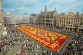 Le Mexique à l'honneur pour la présentation du tapis de fleurs 2018 à Bruxelles !