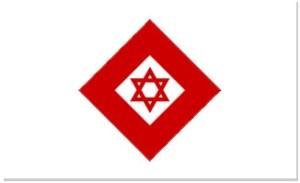 Cristallo rosso con scudo di David