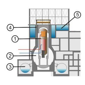 Sezione schematicha di un reattore BWR