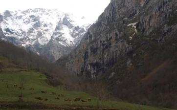 Senderismo Asturias, Foz Andamios