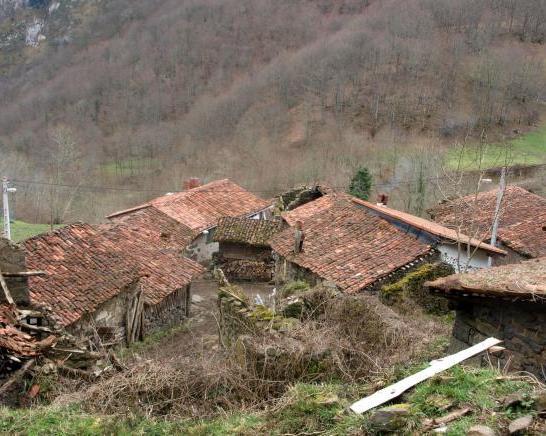 Viboli, Concejo de Ponga