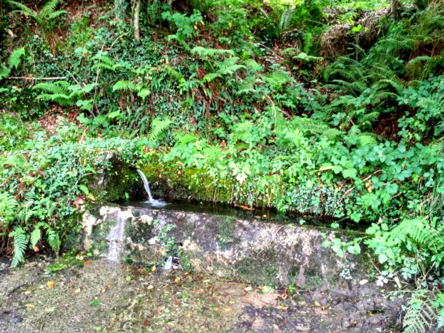 Bebedero, fuente en La Canal