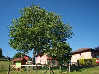 La Quintana de Romillo, exteriores