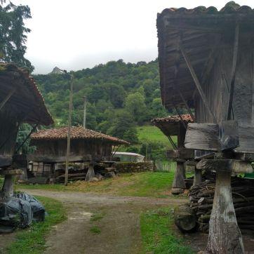 Conjunto de hórreos en Espinaredo