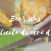 bee's wrap - pellicola alimentare di cera d'api