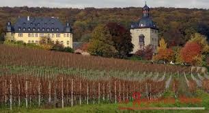 vino tedesco 3