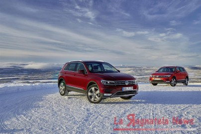 media-Nuova Tiguan_DB2016AU00046