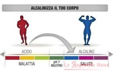 alcalini1
